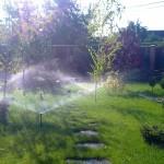 Система автополива газона и растений