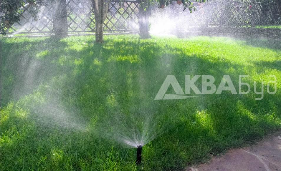 Система автополива сеянного газона в Слободе Фото