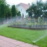 Автоматический полив газона и розария в Осещина (Киевская область)