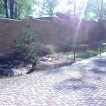 Фото Система приусадебного полива газона