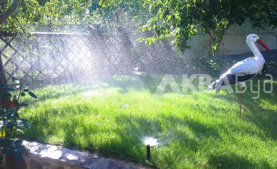 Автоматический полив газона в Слободе Фото