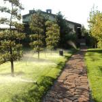 Автоматический полив газона и деревьев спреями
