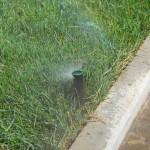 Автоматичекий полив газона спрейного типа