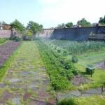 Фото Автоматический полив огорода в Чернигове