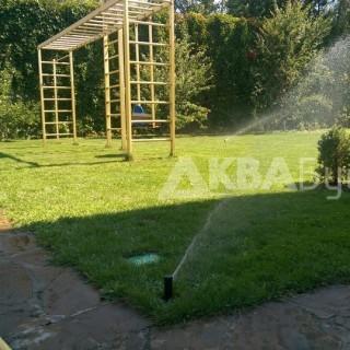 Зеленый газон через неделю после установки полива