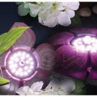Подводная подсветка Sicce Flower LED Basic в действии