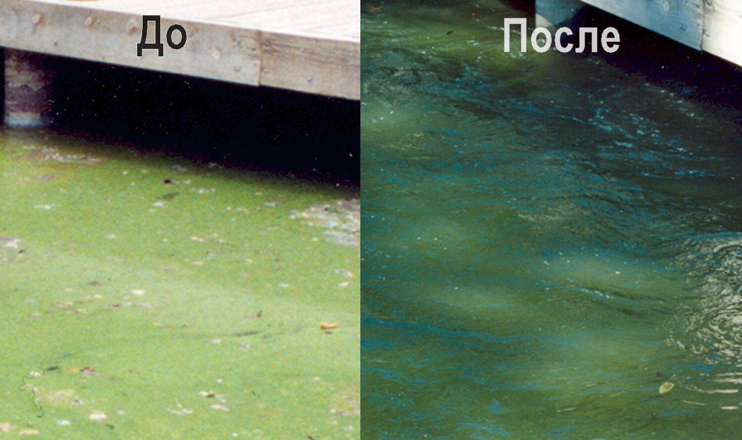 Состояние воды до и после установки аэратора для пруда